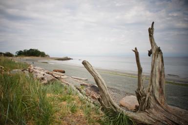 Pipers Lagoon, Nanaimo,