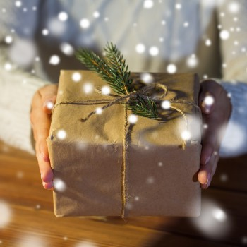Don't Let Thieves Steal Your Holiday Memories